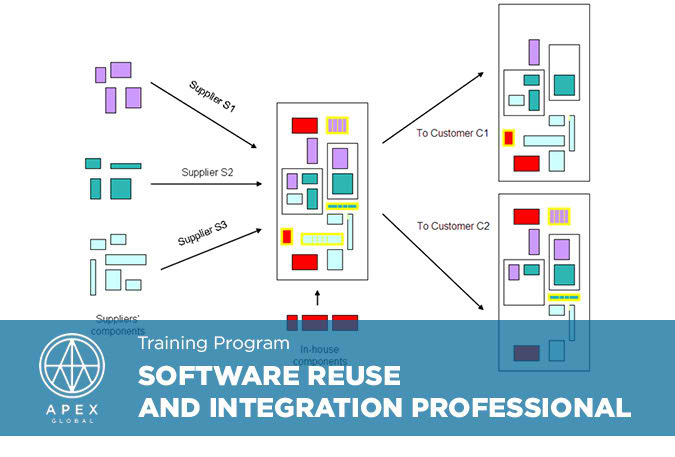 Software Reuse and Integration Professional