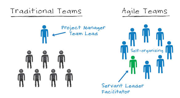self-organizing team Agile