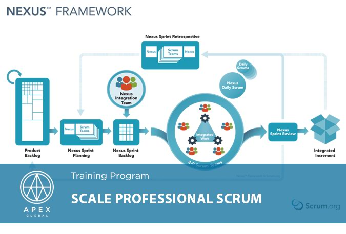 Dao tao Scale Professional Scrum1