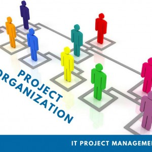 project-manager-chuyen-nghiep-to-chuc-organization