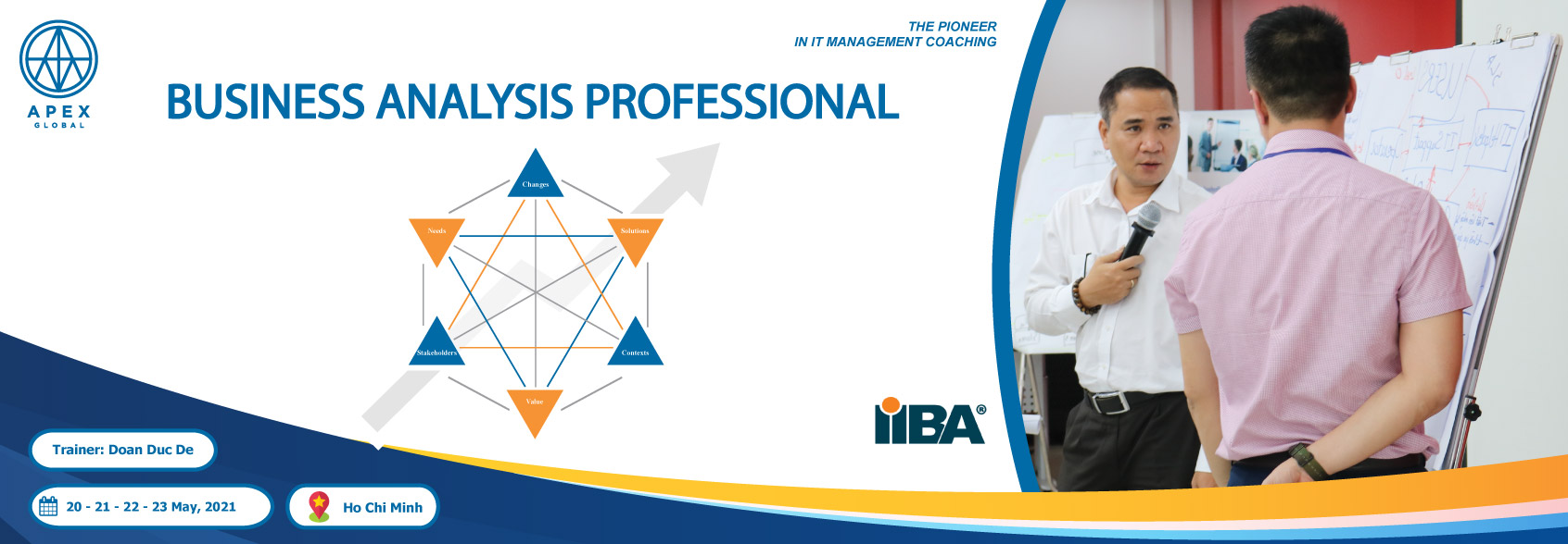 Business-Analysis-Professional