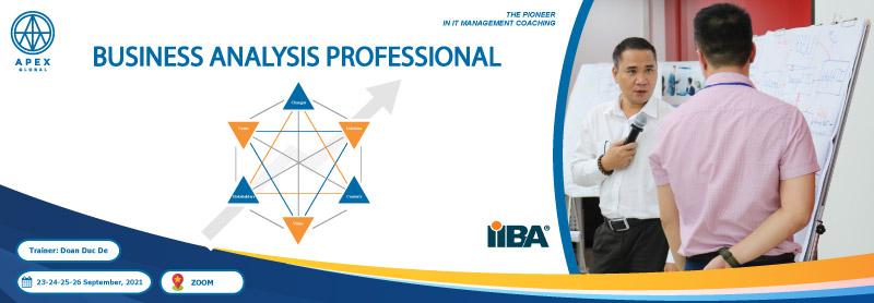 Business-Analysis-professional